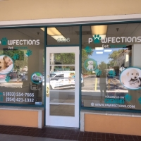 Salon Pet grooming